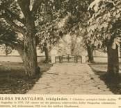 Trädgården på Gärdslösa prästgård.