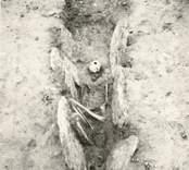 Störby - Störlinge gravfält, hällkista.  En hällkista med mänskliga kvarlevor påträffad vid utgrävning.