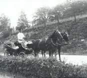 En så kallad landå, hästskjuts, vid Falsterbo i Hjorteds socken.