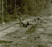 Arkeologisk undersökning  Boplats C2. Under utgrävning. Från norr.