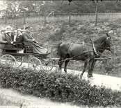 Hästskjuts med  Signe Lindholm och sex okända vid Flugebro.