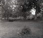 En hage i Fagerhult.