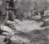 Primitiv väg vid övergiven boplats mellan Hökfors och Sandslätt.