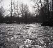 Virån, ett vattenflöde som rinner ut i Östersjön.