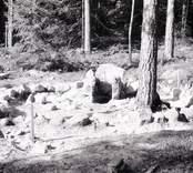 En rund stensättning från bronsåldern, i Virkvarn.