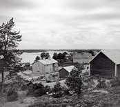 Bostadshus på Vinö i Misterhults skärgård. Foto: 26/07 1955.