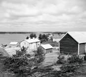 Vinö mot Klintemåla. Foto: 27/07 1955.