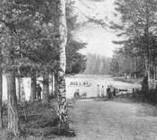 Strandpromenad vid Linneasjön i Nybro.
