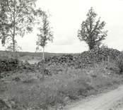 En fornlämning i form av ett Röse i Dvärgstad. Vid odlingslandskap och grusväg.