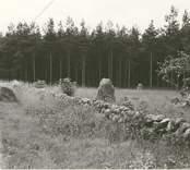 Gravfält i Gärdslösa från järnåldern