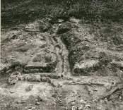 En ryssja, påträffad vid utgrävningen i Skedemosse.  Katsan (ryssjan) F 223
