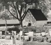 Panoramabild från Madesjö kyrkogård med bårhuset och kyrkstallarna.