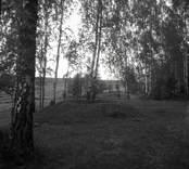 Ett gravfält i Blackstad socken.