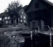 Kastmanska gården i Figeholm. I bilden syns ett bostadshus, en ekonomibyggnad, en brygga och två ekor.