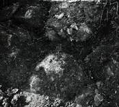 Fynd vid utgrävningarna av Skedemosse, silverbeslag i läge.