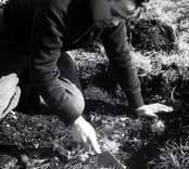 Ulf Erik Hagberg vid utgrävningarna av Skedemosse.