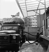 Lossning av socker i Uppsala