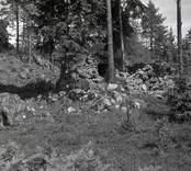 Rester av väggar till en stenstuga i Buttetorp.