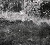 Stensättning i Fittjehammar.