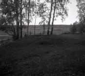 Gravfält på en kulle, i Blackstad sn.