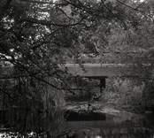 Bro över Ljungbyån söder om Riveberg i Nybro kommun. Foto, uppströms från norr.