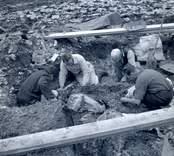 Arkeologisk undersökning vid Skedemosse 1961.