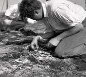 Arkeologisk undersökning vid Skedemosse.