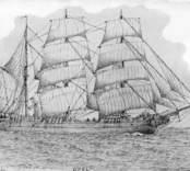 Barkskepp, 380 br.ton. Byggt i Hamburg 1840. Inköpt från Tyskland till Västervik av G. Ideström 1888. År 1900 inköpt från Ideströms sterbhus till Oskarshamn av Gustaf Nilzén. Avriggades 1905 eller 1906 till pråm.