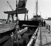 Lossning av bulkfartyg i hamnen i Oskarshamn. Troligen spannmålslast.