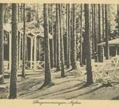 Skogsserveringen i Badhusparken i Nybro.