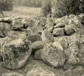 Stenröse mellan Aleglo och Ugglehagen.