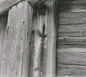 Knut på en opanelad stuga i Högatorp.
