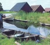 Vykort med eka och båthus i Hasselö.