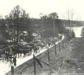 Axel Karlssons brudfölje 1914.