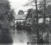Dammen vid Falsterbo bruk?