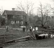En familj i Kallernäs 1919.
