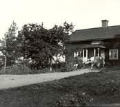 Eriks och Selmas björkdragning. i Klippan 1917.