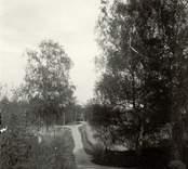 Hjorted (mitt emot kyrkan), Sissleklint.