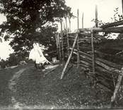 Lekande barn vid gärdsgården.