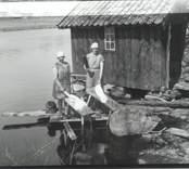 Tvättning av kläder i Falsterbo, Hjorted.