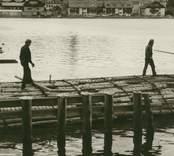 Bogsering av timmer i Västerviks hamn.