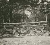 Stengärdsgård i Grönskåra.