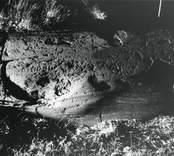 1964 upptäcktes på en brant sluttande bergklack en ristning med tio skepp eller delar därav  och två  djurfigurer. Ytan är starkt vittrad.