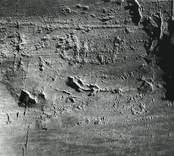 Törnsfall socken, cirka 600 meter SÖ Källsåker. 1964 upptäcktes på en brant sluttande bergsklack en ristning med 10 skepp eller delar därav, 2 djurfigurer. Ytan är starkt vittrad.