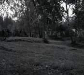 Lunds kulle, en fornlämning från yngre järnålder.