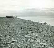 Mellan Ölands norra udde och Byxelkrok dominerar vidsträckta klapperstensfält landskapet. Det mest kända området är Neptuni åkrar.