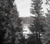 Utsikt från Åsen mot norr.