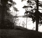 En sjö vid Mörtfors på vägen mot Bjurvik.
