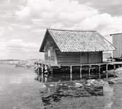 Tidemans sjöbod. Foto: 14/08 1951.
