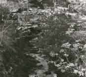 Exteriörbild av kvarnen / sågen. Kvarnrännan i jorden.